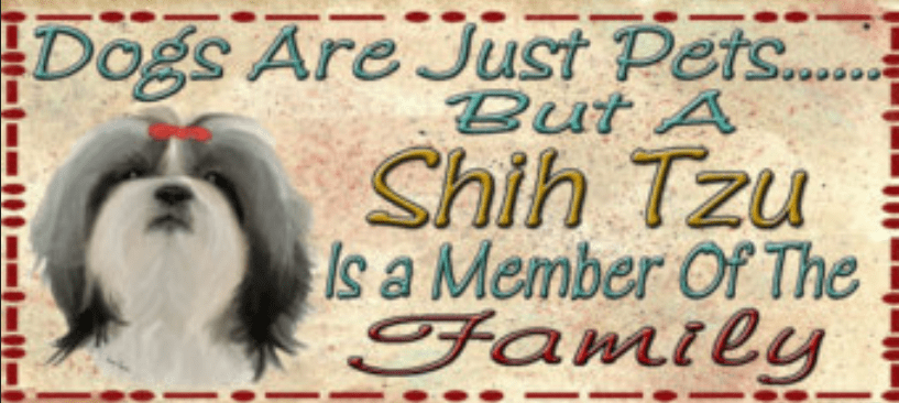 Shih Tzu Is A Member Of The Family